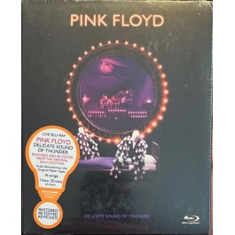 PINK FLOYD-DELICATE SOUND...