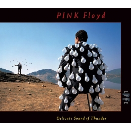 PINK FLOYD-DELICATE SOUND OF THUNDER CD