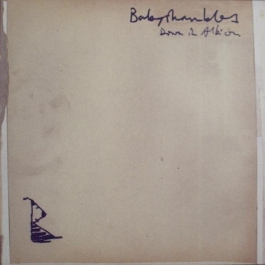 BABYSHAMBLES-DOWN IN ALBION CD
