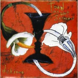 TOAD THE WET SPROCKET-DULCINEA CD