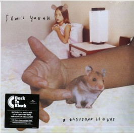 SONIC YOUTH-A THOUSAND...