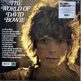 DAVID BOWIE-THE WORLD OF...